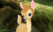 Bambi Forest Friends